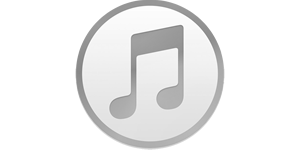 Apple's iTunes media platform